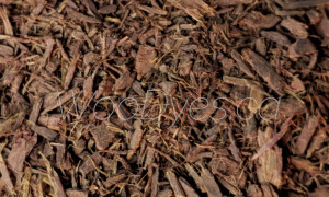 Mimosa Hostilis Root Bark (Brazilian Powdered) WD 2 Close-Up