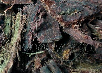 Mimosa Hostilis Root Bark (Brazilian Whole) WD 2 Close-Up