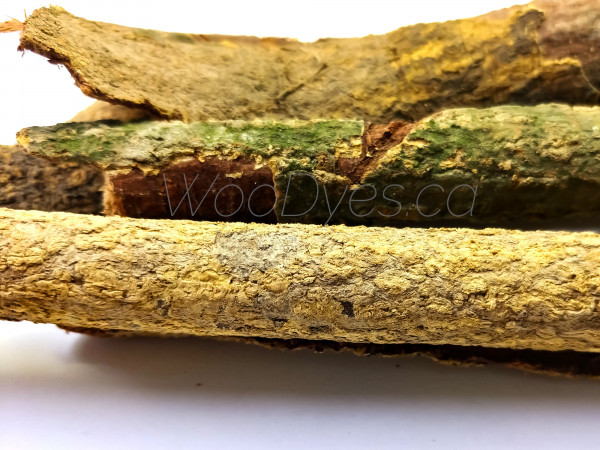 acacia confusa whole root bark (ACRB) 3
