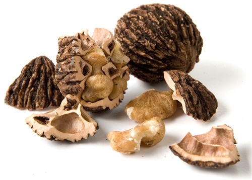 Black Walnut Husks