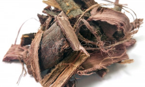 Mimosa Hostilis Root Bark (Mexican Shredded)