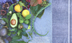 Natural Color: Vibrant Plant Dye Projects for Your Home and Wardrobe (Hardcover 2016)